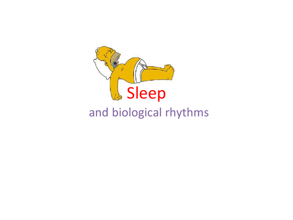Preview of Psychology - sleep