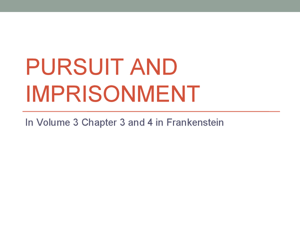 Preview of Pursuit and Imprisonment