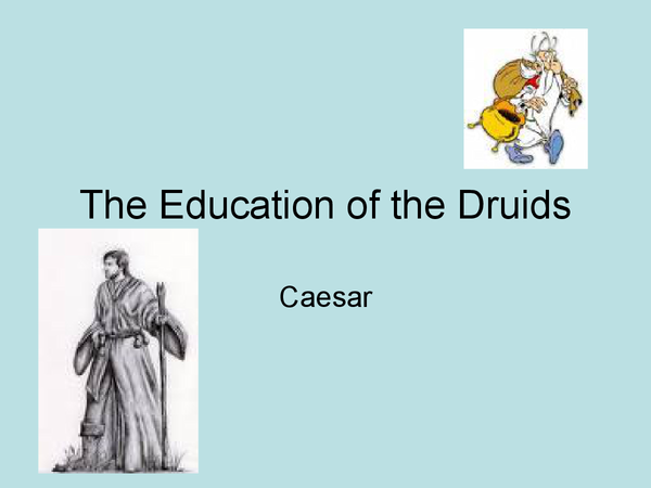 Preview of Questions and notes on The Druids: Their education