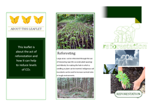Preview of Reforestation leaflet