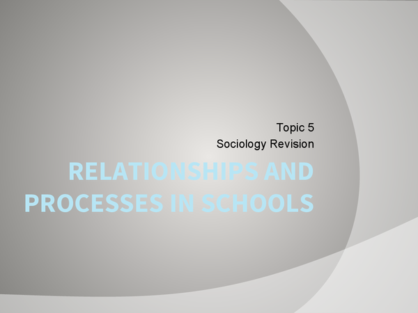 Preview of Relationships and Processes within Education - Pupil Subcultures and more.