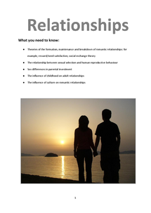 Preview of Relationships Revision Booklet
