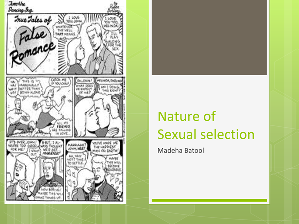 Preview of relationships-sexual selection