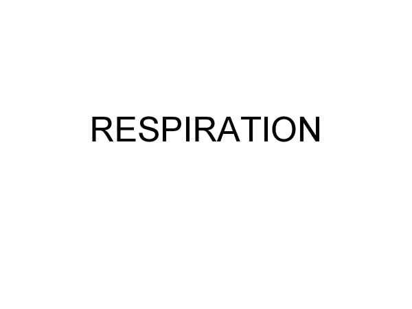 Preview of RESPIRATION A2 BIOLOGY AQA