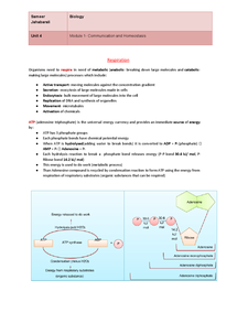 Preview of Respiration (OCR)