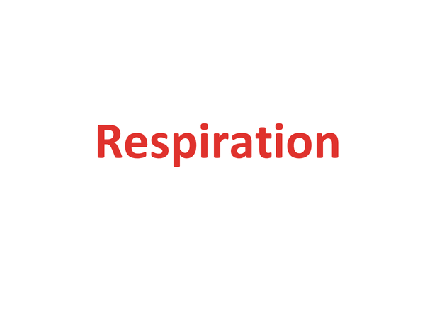 Preview of Respiration (Unit 1 Module 4 OCR)