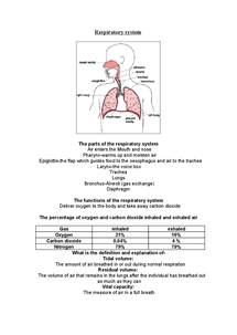Preview of Respiratory system