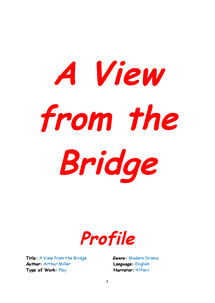 Preview of revsion booklet on A view from the bridge