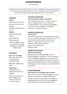 Preview of Schizophrenia Poster (symptoms, explanations/causes, definitions)