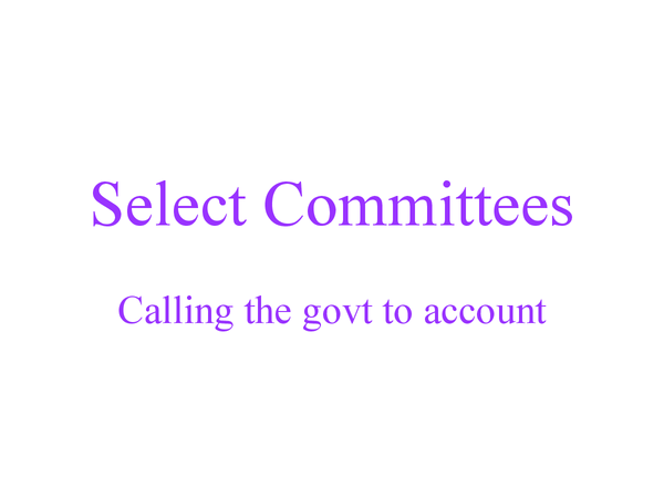 Preview of Select Committees