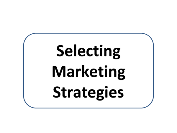 Preview of SELECTING MARKETING STRATEGIES