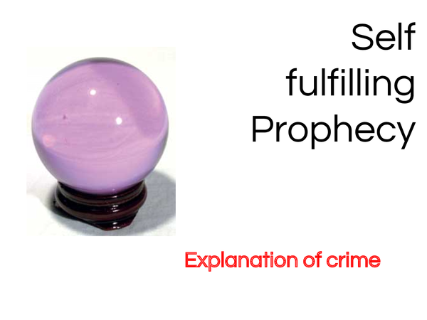 Preview of Self fulfilling Prophecy: Explanation of crime