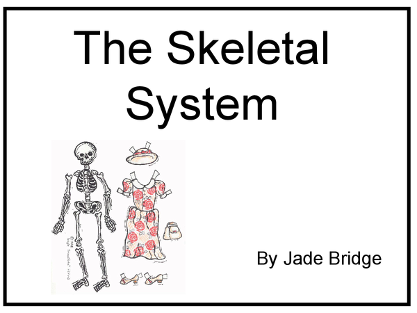 Preview of Skeletal System Powerpoint