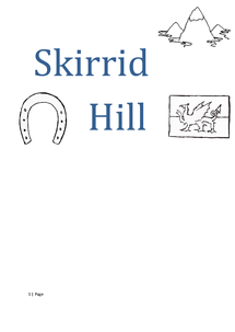 Preview of Skirrid Hill- Owen Sheers
