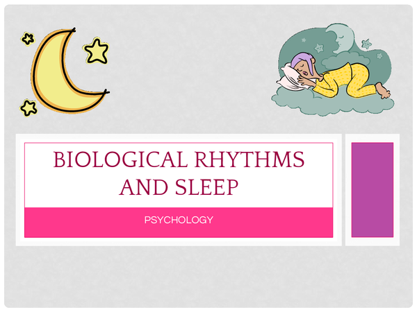 Preview of Sleep ultradian, infradian and circadian