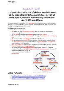 Preview of Sliding Filament Theory