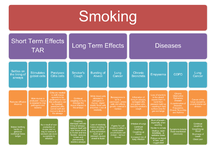 Preview of Smoking Notes - AS OCR Biology Unit 2