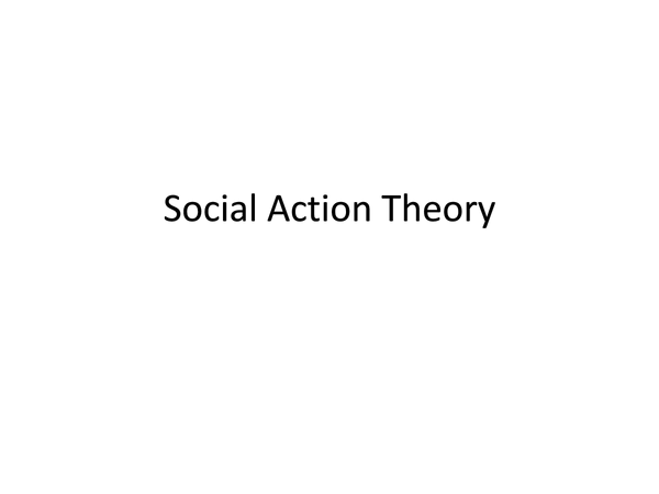 Preview of Social Action Theory