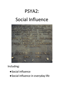 Preview of social influence revision