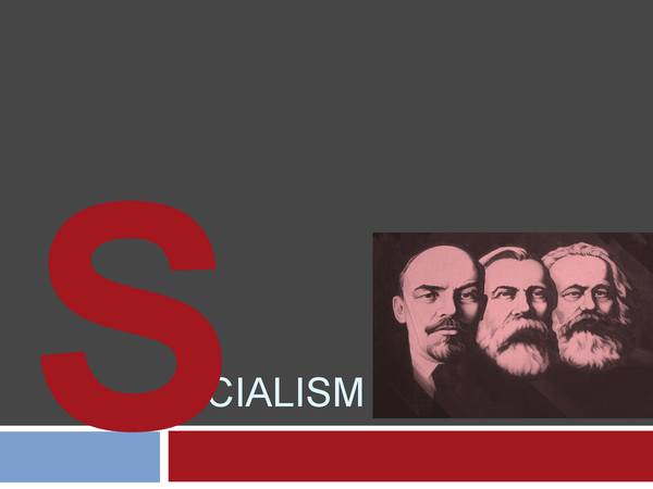 Preview of Socialism Notes