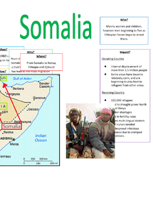 Preview of Somalia - Case Study