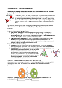 Preview of Specification Revision Notes- Biological Molecules