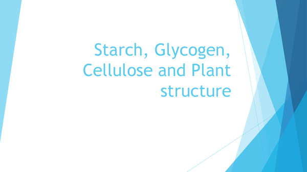 Preview of Starch, Glycogen, Cellulose and Plant Structure
