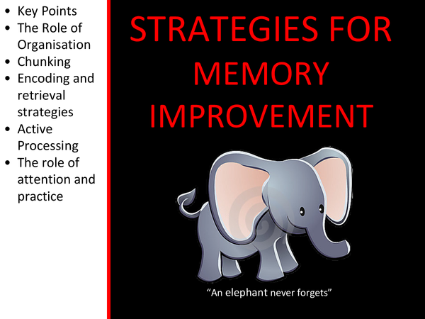 Preview of Strategies For Memory Improvement