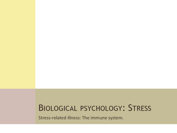 Preview of Stress & Immune System Powerpoint