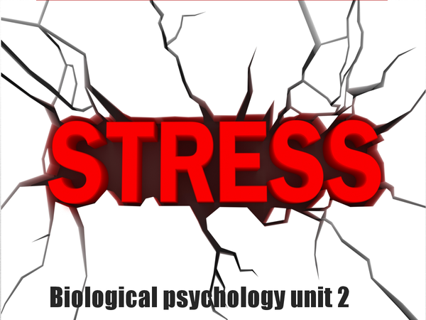 Preview of Stress unit 2 psychology AS level revision powerpoint