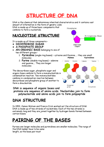 Preview of Structure of DNA