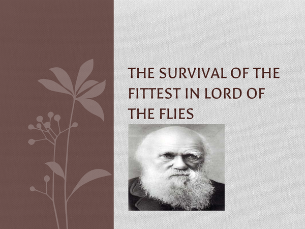 Preview of Survival of the fittest in Lord of the Flies GCSE