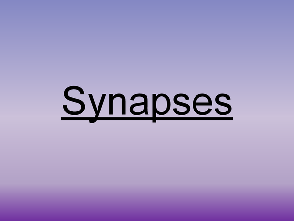 Preview of Synapses