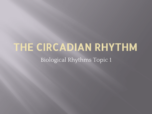 Preview of The Circadian Rhythms