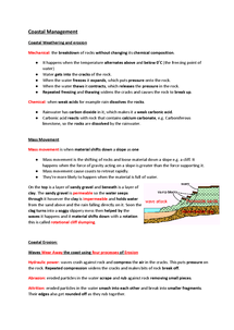 Preview of The Coastal Zone Notes With Case studies