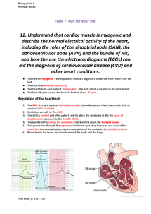 Preview of The Heart and ECGs