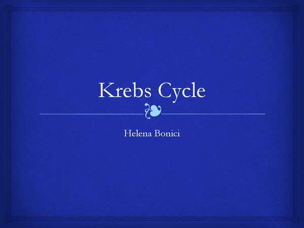 Preview of The Krebs Cycle