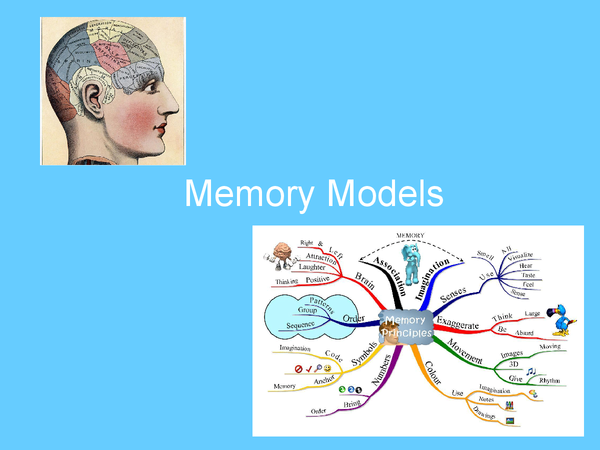Preview of The Models of Memory