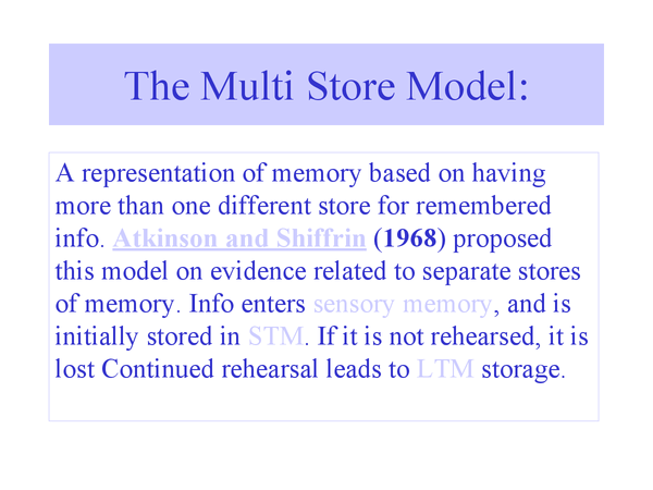 Preview of The Multi Store Model