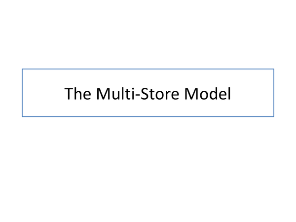 Preview of The Multi-Store Model of Memory