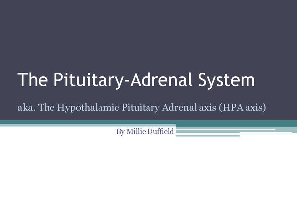Preview of The Pituitary Adrenal System - HPA Axis