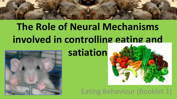 Preview of The Role of Neural Mechanisms Involved in Controlling Eating & Satiation