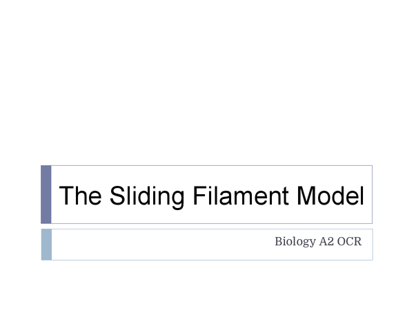 Preview of The Sliding Filament Model