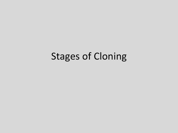 Preview of The Stages of Cloning