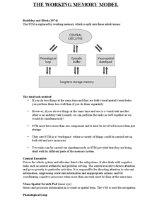 Preview of The working memory model notes