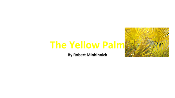 Preview of The Yellow Palm Analysis