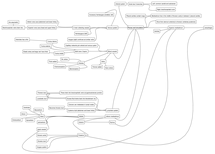Preview of Thorax & Circulation mindmap