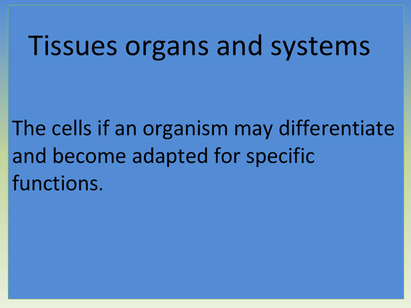 Preview of Tissues,Organs and Organ systems