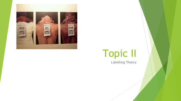Preview of Topic II: Labelling Theory