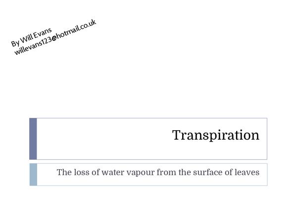 Preview of Transpiration Exam Prep